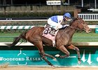 Molly Morgan Back for 2015 La Troienne Stakes
