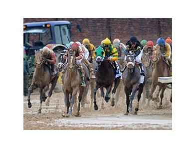 Orb in the Kentucky Derby.