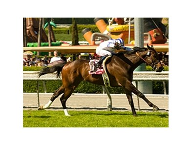 "Mr Gruff powers home in the San Simeon.<br><a target=""blank"" href=""http://www.bloodhorse.com/horse-racing/photo-store?ref=http%3A%2F%2Fpictopia.com%2Fperl%2Fgal%3Fprovider_id%3D368%26ptp_photo_id%3D8018677%26ref%3Dstory"">Order This Photo</a>"