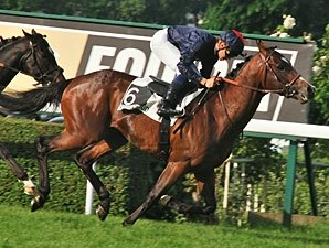Montjeu Sires 100th Stakes Winner