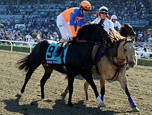 Noble Tune Tries Plan 'B' in American Turf