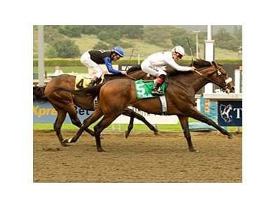 "Colonel John won the Santa Anita Derby last spring. <br><a target=""blank"" href=""http://www.bloodhorse.com/horse-racing/photo-store?ref=http%3A%2F%2Fpictopia.com%2Fperl%2Fgal%3Fprovider_id%3D368%26ptp_photo_id%3D4085194%0D%0A%26ref%3Dstory"">Order This Photo</a>"