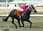 West Side Bernie and Stewart Elliott take the Kentucky Cup Juvenile at Turfway.