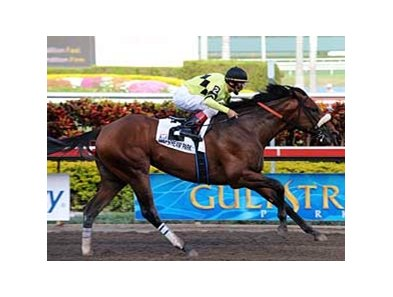 "Florida Derby winner Quality Road<br><a target=""blank"" href=""http://www.bloodhorse.com/horse-racing/photo-store?ref=http%3A%2F%2Fpictopia.com%2Fperl%2Fgal%3Fprovider_id%3D368%26ptp_photo_id%3D7964864%26ref%3Dstory"">Order This Photo</a>"