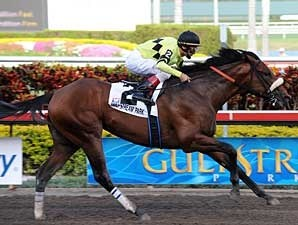 Quality Road wins the Florida Derby.