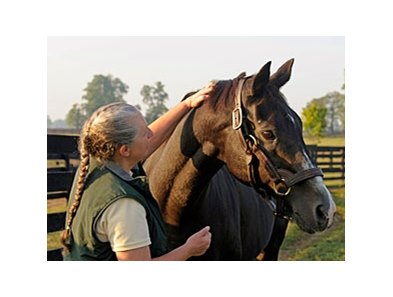 "Wild Again with Three Chimneys stallion manager Sandy Hatfield in September 2008.<br><a target=""blank"" href=""http://www.bloodhorse.com/horse-racing/photo-store?ref=http%3A%2F%2Fpictopia.com%2Fperl%2Fgal%3Fprovider_id%3D368%26ptp_photo_id%3D6965443%26ref%3"