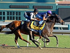 Game On Dude Expected to Run in Native Diver