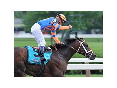 "Stay Thirsty<br><a target=""blank"" href=""http://www.bloodhorse.com/horse-racing/photo-store?ref=http%3A%2F%2Fpictopia.com%2Fperl%2Fgal%3Fprovider_id%3D368%26ptp_photo_id%3D9648721%26ref%3Dstory"">Order This Photo</a>"