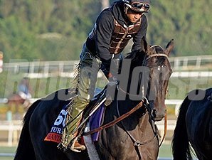 Handsome Mike preps for the Breeders' Cup