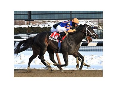 "Calibrachoa won the 2011 Toboggan by a half-length.<br><a target=""blank"" href=""http://www.bloodhorse.com/horse-racing/photo-store?ref=http%3A%2F%2Fpictopia.com%2Fperl%2Fgal%3Fprovider_id%3D368%26ptp_photo_id%3D9379588%26ref%3Dstory"">Order This Photo</a>"