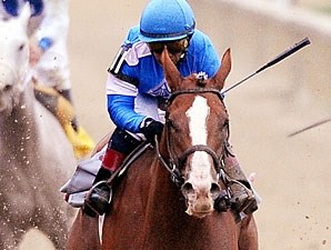 Bluegrass Atatude wins the 2011 Maryland Million Lassie.