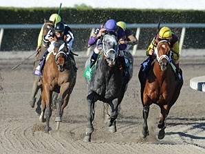 Flashpoint wins the 2011 Hutcheson.
