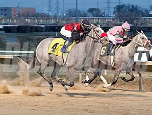 Lakotadreamcatcher wins the 2013 Pat Whitworth Illinois Debutante Stakes.