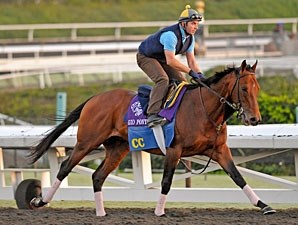 Gio Ponti 2009 Breeders' Cup
