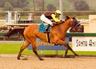 Dearest Trickski concluded her 2007 campaign with four consecutive victories.