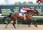 Lookin At Lucky won the Rebel on March 13.