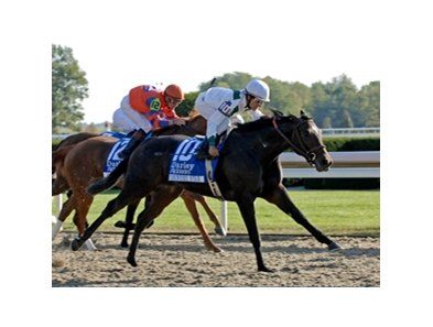 "Country Star won the 2007 Alcibiades at Keeneland. <br><a target=""blank"" href=""http://www.bloodhorse.com/horse-racing/photo-store?ref=http%3A%2F%2Fgallery.pictopia.com%2Fbloodhorse%2Fgallery%2FS646876%2Fphoto%2F2436002%2F%3Fo%3D2"">Order This Photo</a>"