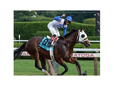 "Strong Mandate<br><a target=""blank"" href=""http://photos.bloodhorse.com/AtTheRaces-1/at-the-races-2013/27257665_QgCqdh#!i=2763615901&k=zq3MQHB"">Order This Photo</a>"