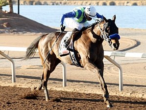 Isn't He Clever wins the 2012 Borderland Derby.