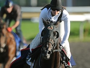 Mobilizer at Woodbine on July 1, 2010.