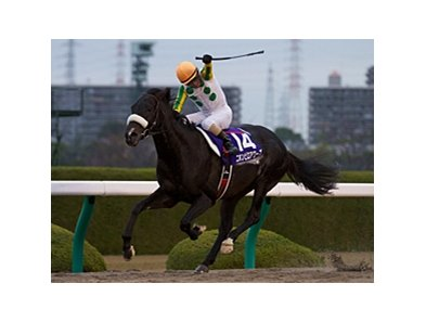 Nihonpiro Ours wins the Japan Cup Dirt.