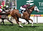 Apache Cat powers to victory in the Australia Stakes.