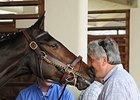 "Rachel Alexandra with trainer Steve Asmussen. <br><a target=""blank"" href=""http://www.bloodhorse.com/horse-racing/photo-store?ref=http%3A%2F%2Fpictopia.com%2Fperl%2Fgal%3Fprovider_id%3D368%26ptp_photo_id%3D8838264%26ref%3Dstory"">Order This Photo</a>"