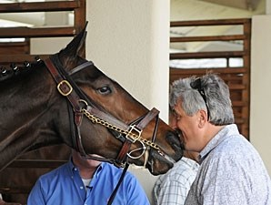 Rachel Alexandra nuzzles Steve Asmussen while schooling at Fair Grounds on March 12, 2010.