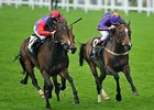 "Estimate (left) takes the Gold Cup for The Queen.<br><a target=""blank"" href=""http://photos.bloodhorse.com/AtTheRaces-1/at-the-races-2013/27257665_QgCqdh#!i=2586534437&k=NM67xfM"">Order This Photo</a>"