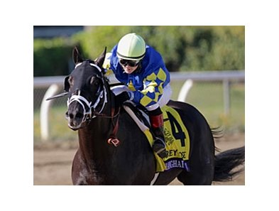 "Shanghai Bobby<br><a target=""blank"" href=""http://photos.bloodhorse.com/BreedersCup/2012-Breeders-Cup/Juvenile/26130125_Wz4K8f#!i=2194441456&k=9BPx2fq"">Order This Photo</a>"