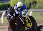 Shanghai Bobby Stays Sharp for Florida Derby