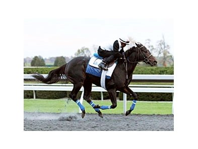 Golden Ticket worked 5 furlongs in 1:02 2/5 at Keeneland on October 20.