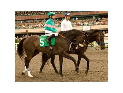 "Zenyatta<br><a target=""blank"" href=""http://www.bloodhorse.com/horse-racing/photo-store?ref=http%3A%2F%2Fpictopia.com%2Fperl%2Fgal%3Fprovider_id%3D368%26ptp_photo_id%3D9065984%26ref%3Dstory"">Order This Photo</a>"