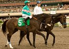 Zenyatta Works Six Furlongs at Hollywood
