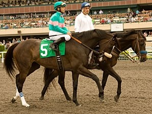 Zenyatta wins the 2010 Vanity.