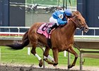 Gran Estreno fights for victory in the Washington Park Handicap.