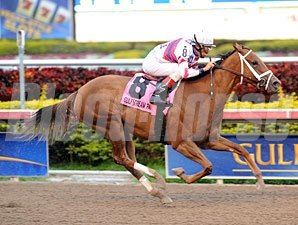 Fusaichiswonderful wins the 2013 Primal Force Stakes.