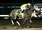 Twinspired Returns to Turfway for Battaglia