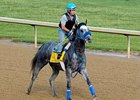 Creative Cause works at Churchill Downs 4/30/2012.