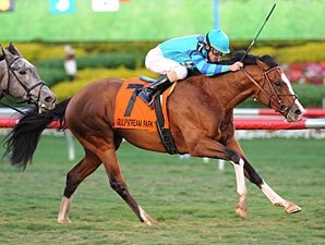 Get Stormy Strikes in Gulfstream Turf 'Cap