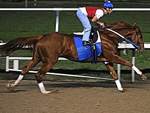 Curlin, Pyro Impressive in Workouts