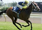 Barracks Road Upsets Somme in Ontario Damsel
