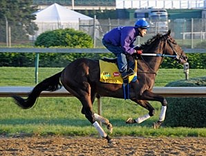 Nehro - Churchill Downs, May 5, 2011