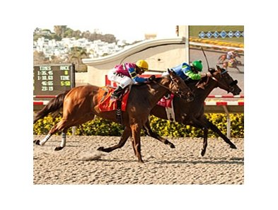 Include Me Out holds off Star Billing to take the Clement L. Hirsch Stakes at Del Mar.