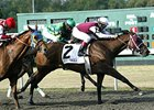 Eldaafer holds off Falling Knife and Atoned to win the Turfway Park Fall Championship Stakes.