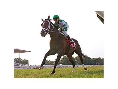 Turbo Compressor won the United Nations Stakes on July 7.