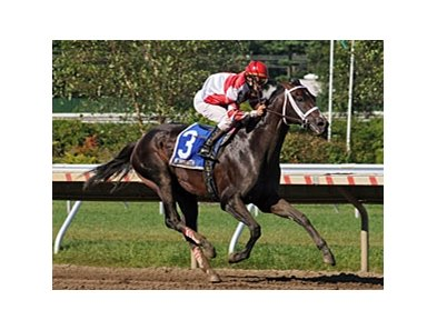 "Honest Man won the Iselin (gr.III) at Monmouth Park. <br><a target=""blank"" href=""http://www.bloodhorse.com/horse-racing/photo-store?ref=http%3A%2F%2Fpictopia.com%2Fperl%2Fgal%3Fprovider_id%3D368%26ptp_photo_id%3D5550912%0D%0A%26ref%3Dstory"">Order This Photo</a>"