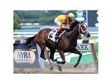 "Dreaming of Julia won the Meadow Star by 16 1/4 lengths on Sept. 9.<br><a target=""blank"" href=""http://photos.bloodhorse.com/AtTheRaces-1/at-the-races-2012/22274956_jFd5jM#!i=2127202662&k=P2fgqsf"">Order This Photo</a>"