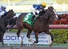 "2011 Hal's Hope winner Soaring Empire is aiming for another try in 2012.<br><a target=""blank"" href=""http://www.bloodhorse.com/horse-racing/photo-store?ref=http%3A%2F%2Fpictopia.com%2Fperl%2Fgal%3Fprovider_id%3D368%26ptp_photo_id%3D9361371%26ref%3Dstory"">Order This Photo</a>"