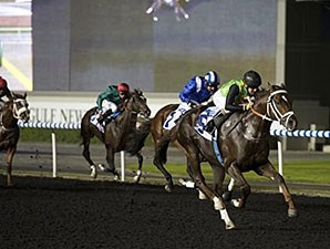 Variety Club wins the 2014 Firebreak Stakes.
